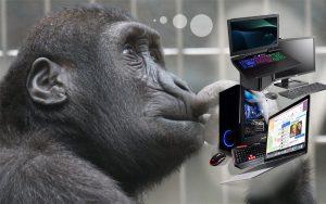 köpa dator